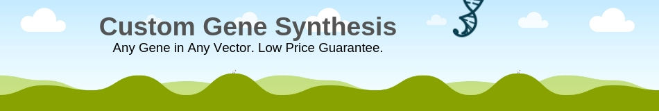 custom gene synthesis service